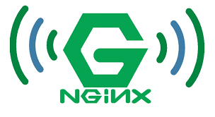 تفاوت وب سرور Nginx و لایسنس دار